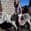 Donkey Pub Crawl A