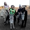Donkey Pub Crawl A (3)