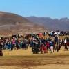 Local Horse Races (1)