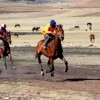 Local Horse Races (3)